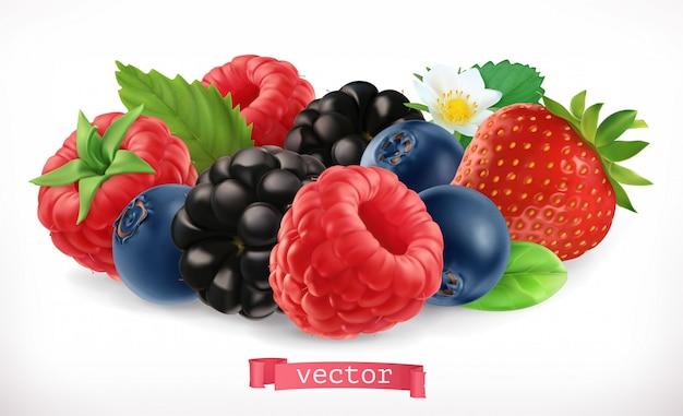 Frutas e frutos da floresta. framboesa, morango, amora, mirtilo. ícone realista 3d