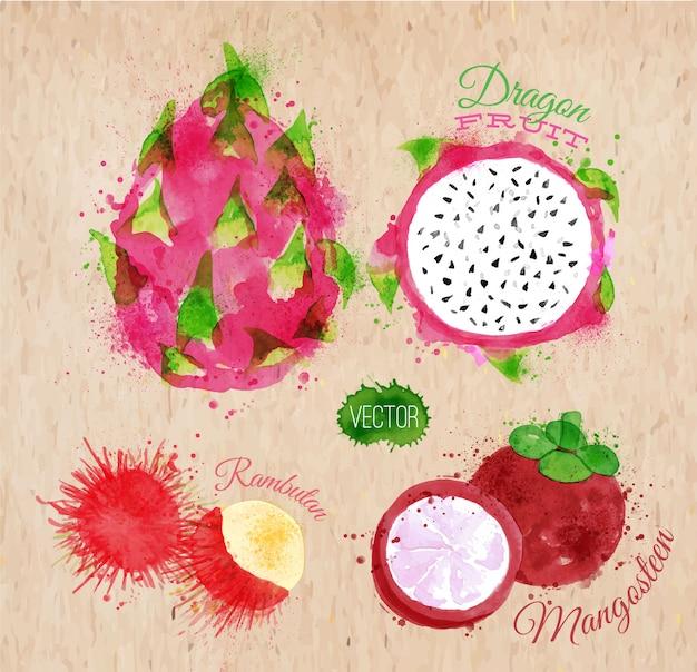 Frutas exóticas aquarela dragão kraft