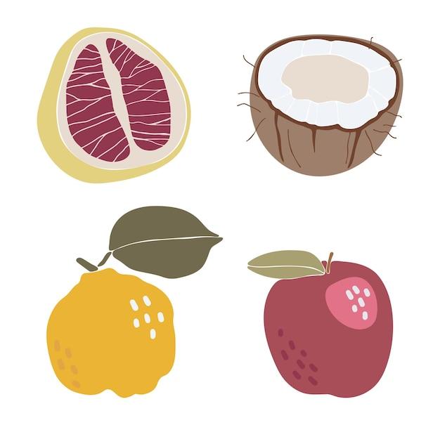 Frutas tropicais abstratas com elementos tropicais isolados de ilustração vetorial