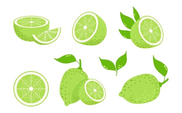 Frutos de limão. fatias de frutas cítricas, limões verdes isolados. ilustração em vetor vitamina c fresca. limão cítrico, suco de limão maduro, comida de frutas