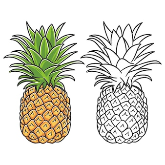 Frutos de verão para um estilo de vida saudável. fruta abacaxi