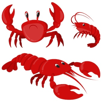 Frutos do mar em estilo cartoon. caranguejo, camarão e lagosta.
