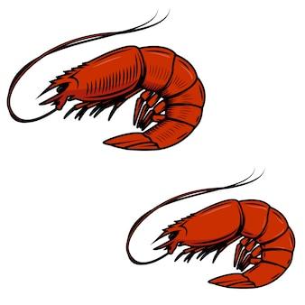 Frutos do mar frescos. ícone de camarão no fundo branco. elemento para o logotipo, etiqueta, emblema, sinal. ilustração