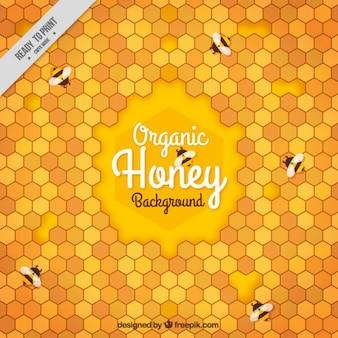 Fundo abstrato de favo de mel