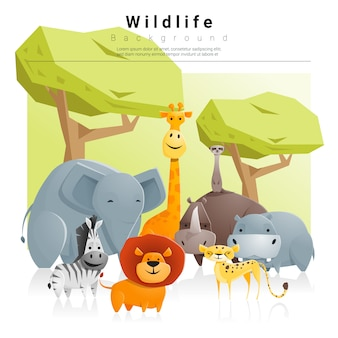 Fundo animal selvagem