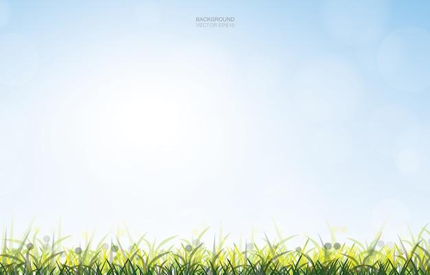 Fundo ao ar livre do campo de grama verde com fundo macio do céu.