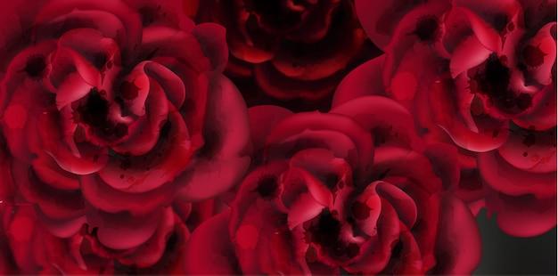 Fundo aquarela rosas vermelhas