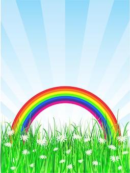 Fundo arco-íris com margaridas na grama