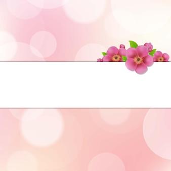 Fundo bokeh com flores de sakura