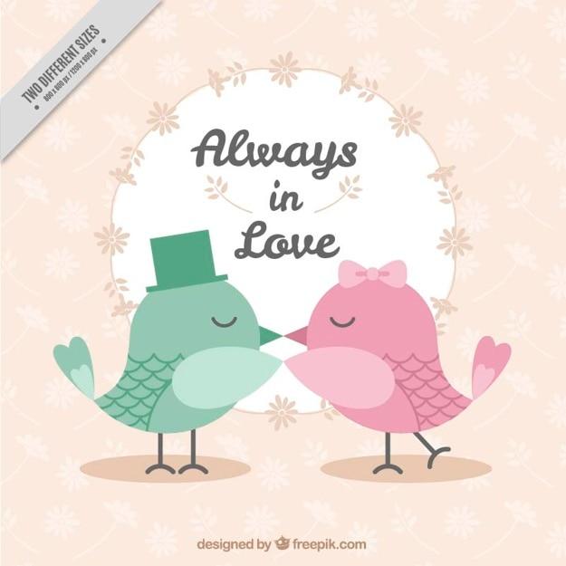 Fundo bonito com os pássaros se beijando