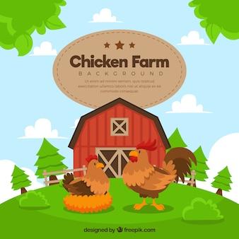 Fundo bonito da exploração agrícola com galinha e galo