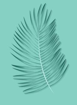 Fundo bonito da folha de palmeira.