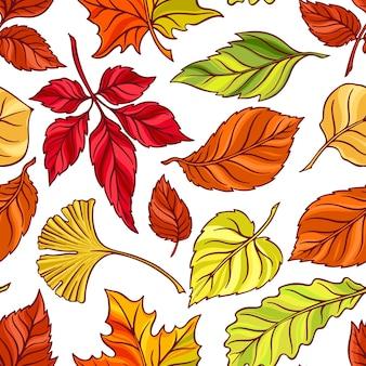 Fundo bonito sem costura de folhas de outono. ilustração desenhada à mão