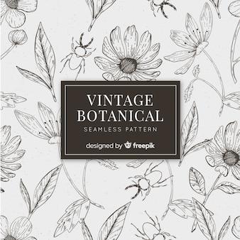 Fundo botânico de esboços vintage