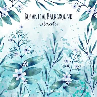 Fundo botânico em aquarela