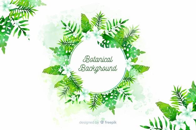 Fundo botânico