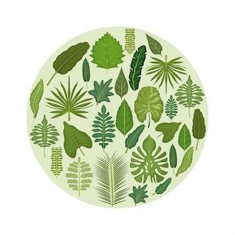 Fundo branco com moldura circular com folhas verdes decorativas para dentro