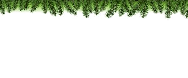 Fundo branco da borda da árvore do abeto de natal