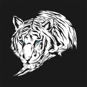 Fundo branco do tigre