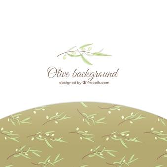 Fundo branco elegante com folhas de oliveira
