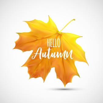 Fundo brilhante olá folhas naturais de outono