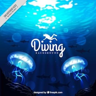 Fundo com água-vivas