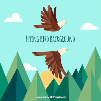 Fundo com águias