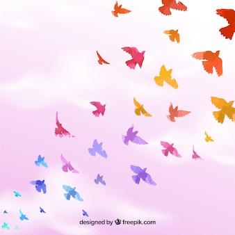 Fundo com belos pássaros planos