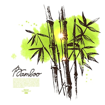 Fundo com esboço desenhado de mão de bambu e borrão aquarela. ilustração vetorial