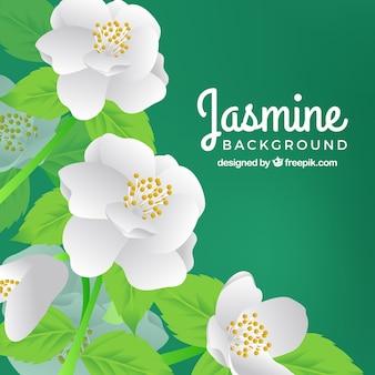 Fundo com flores brancas realistas
