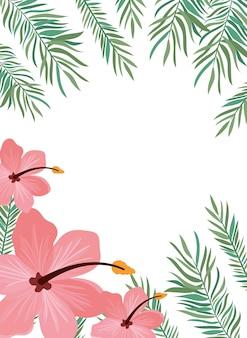 Fundo com flores e folhas de verão