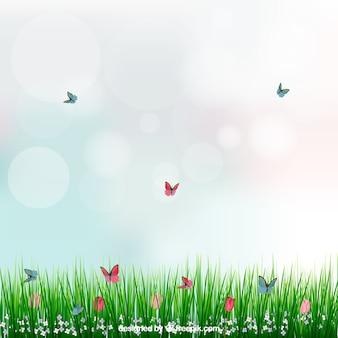 Fundo com grama e borboletas