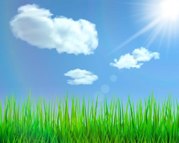 Fundo com grama verde, céu azul, nuvens, sol e brilho. ilustração vetorial