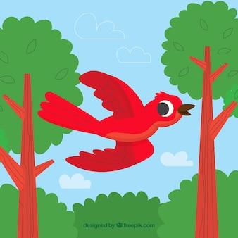 Fundo com pássaro vermelho voador