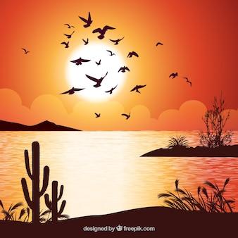Fundo com pássaros ao pôr do sol