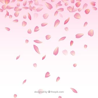 Fundo com pétalas de cerejeira