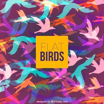 Fundo com silhuetas coloridas de pássaros