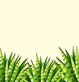 Fundo, com, verde sai