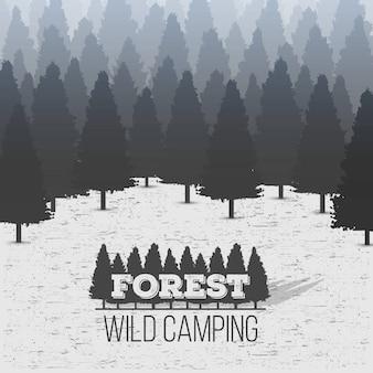 Fundo conífero da floresta do pinheiro da madeira selvagem.