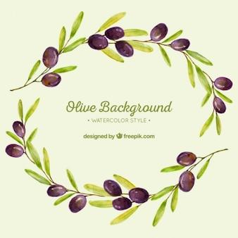 Fundo da aguarela dos ramos de oliveira