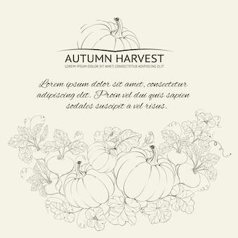 Fundo da colheita do outono