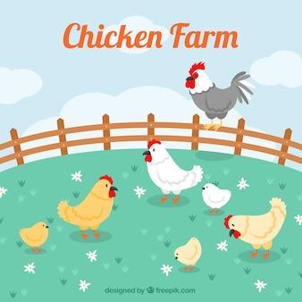 Fundo da exploração agrícola com galinhas