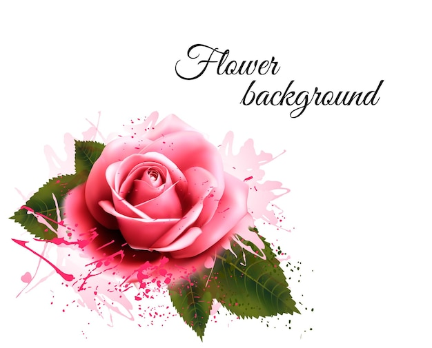 Fundo da flor com uma rosa rosa. vetor.