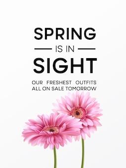 Fundo da flor gerbera e design de tipografia de primavera. ilustração
