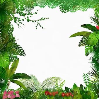 Fundo da floresta tropical
