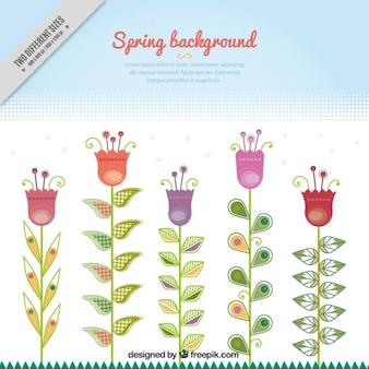 Fundo da mola com tulipas