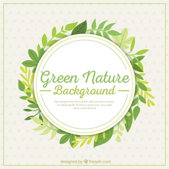 Fundo da natureza verde com folhas