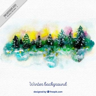 Fundo da paisagem com pinheiros no efeito aquarela