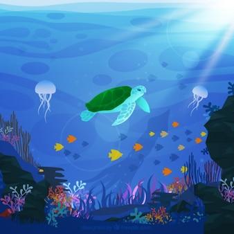 Fundo da vida de mar