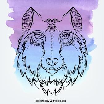 Fundo de aquarela com lobo desenhado a mão